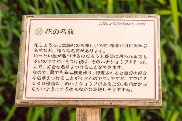 山田池公園-17060311