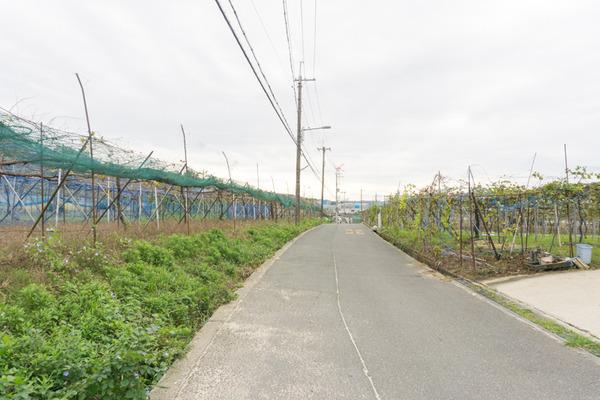 東倉治-120