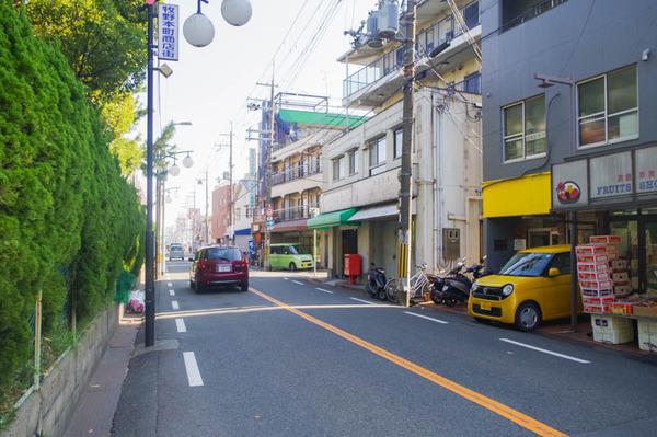 ふくろう-2011171