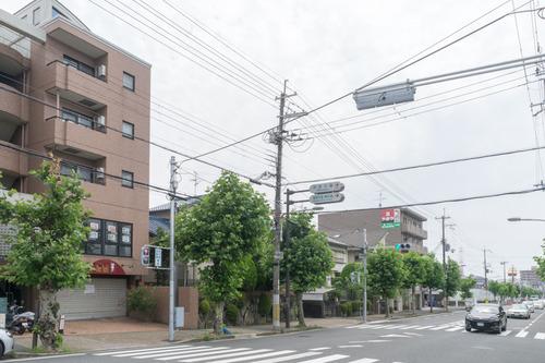 シェヨシ-15070308