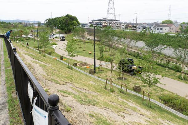 山田池公園-1705162