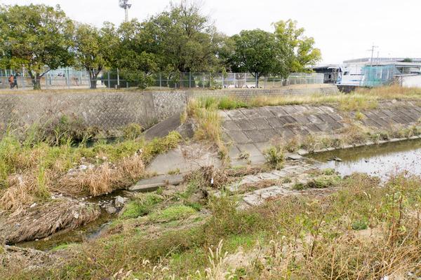 船橋川デルタ-1812152