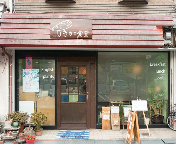 きのこ食堂-16022778