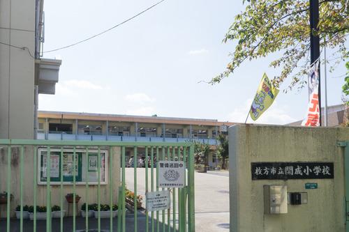 開成小学校-15101401