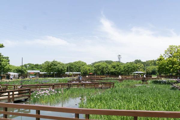山田池公園-18052514