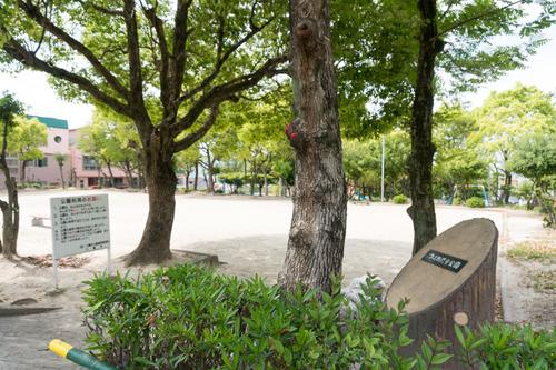 trusty-auka-otokoyama-16