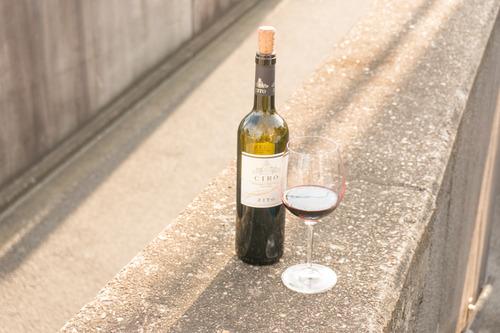 光善寺ワイン後編-174