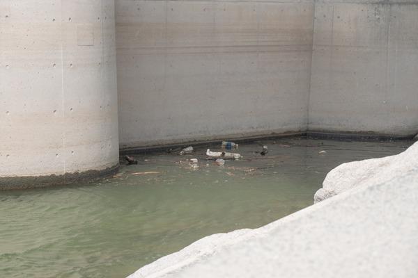 20180808_淀川の水でかき氷-118