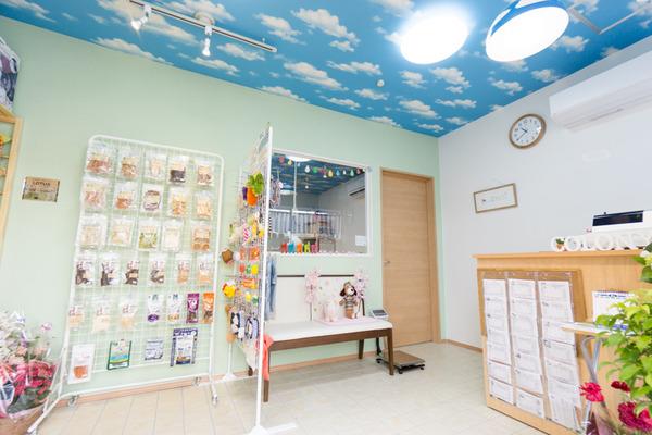 ペットコロニー香里ケ丘店 ドッグサロン-11