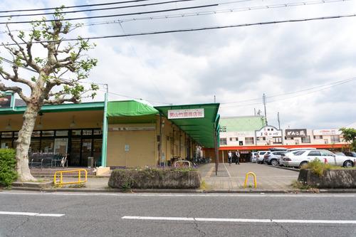 trusty-auka-otokoyama-28
