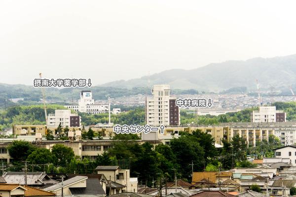 景色-16071529