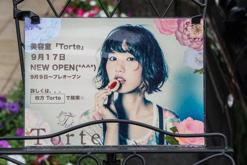 TORTE-1409031
