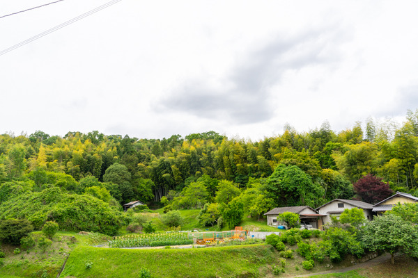 景色-2006011