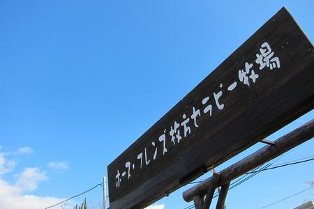 20110125IMG_0053