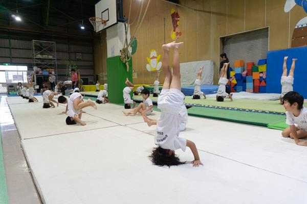 大阪体操クラブ-340