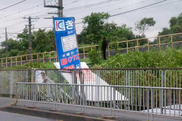津田-1809041-27