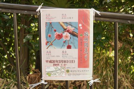 意賀美神社の梅-17