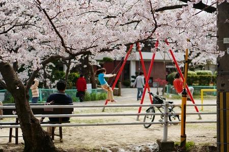 茄子作の桜130401_04