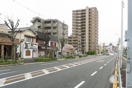 SAKURA-15040601