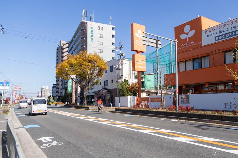 さくら-20111998