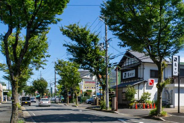 とりせい-2008311