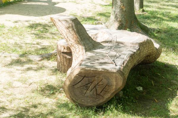 市民の森-18061332