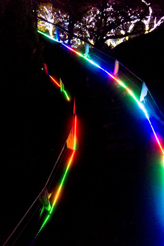 ひらかたパーク光の遊園地-15111162