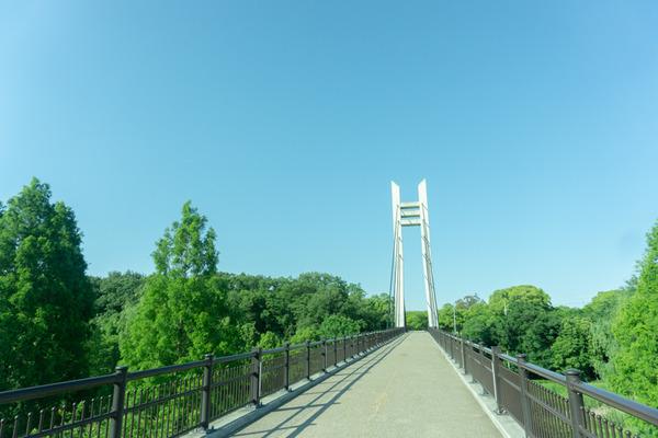山田池公園ナーガ-58