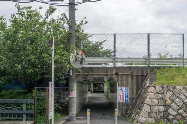伊加賀-1606294