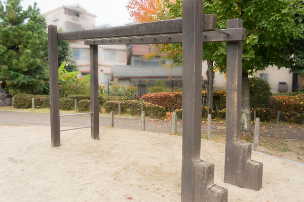 すい公園-16112058