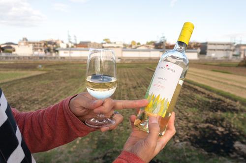 村野ワイン-53
