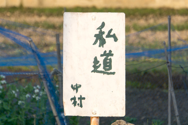 なかむらしどう-1804203