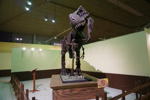ひらパー恐竜大冒険-33