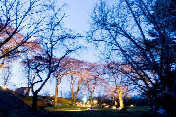 植物園-1704015