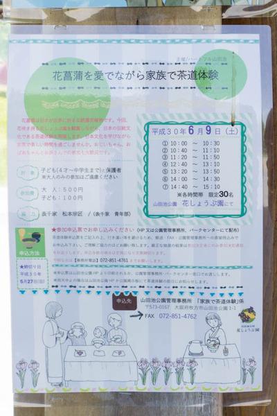 山田池公園-1805254