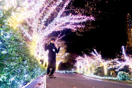 ひらかたパーク光の遊園地-15111152