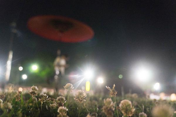 花しょうぶ-19060317