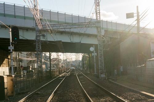 枚方公園-光善寺-15010714