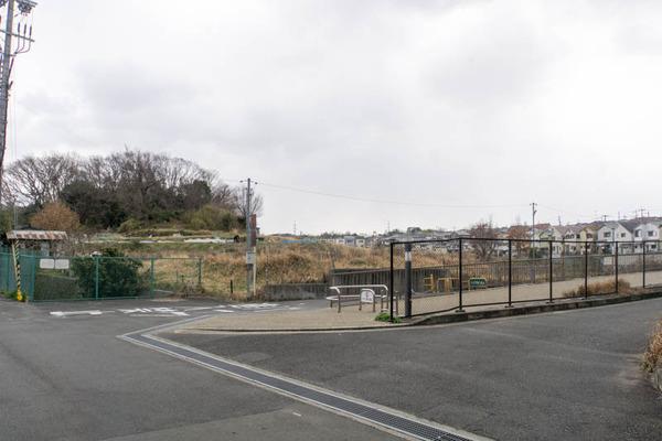 長尾杉線-19031415