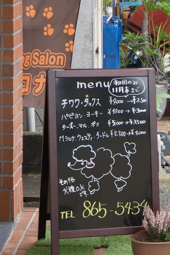 コナ-15110903