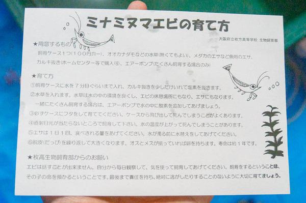 枚方中学-1807211-8