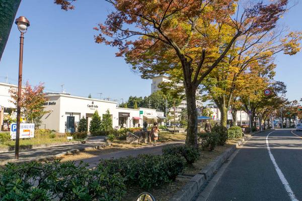 津の田ミート-1711013