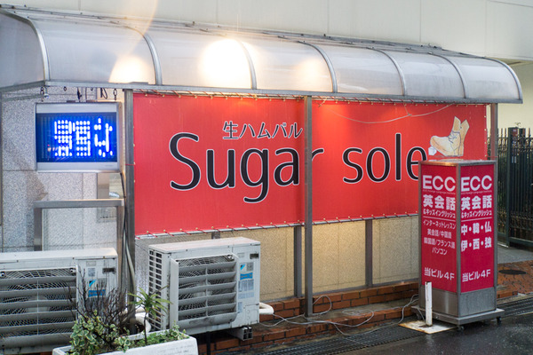 シュガーソール-16030904