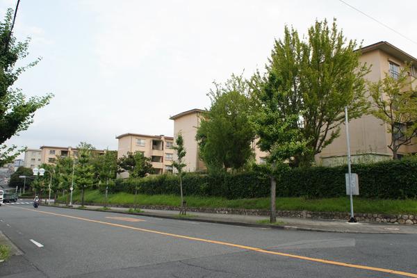 枚方市内の団地敷地内で実施されている、大阪で初めて斜面林を活用してできた子ども向け事業は何?【ひらかたクイズ】