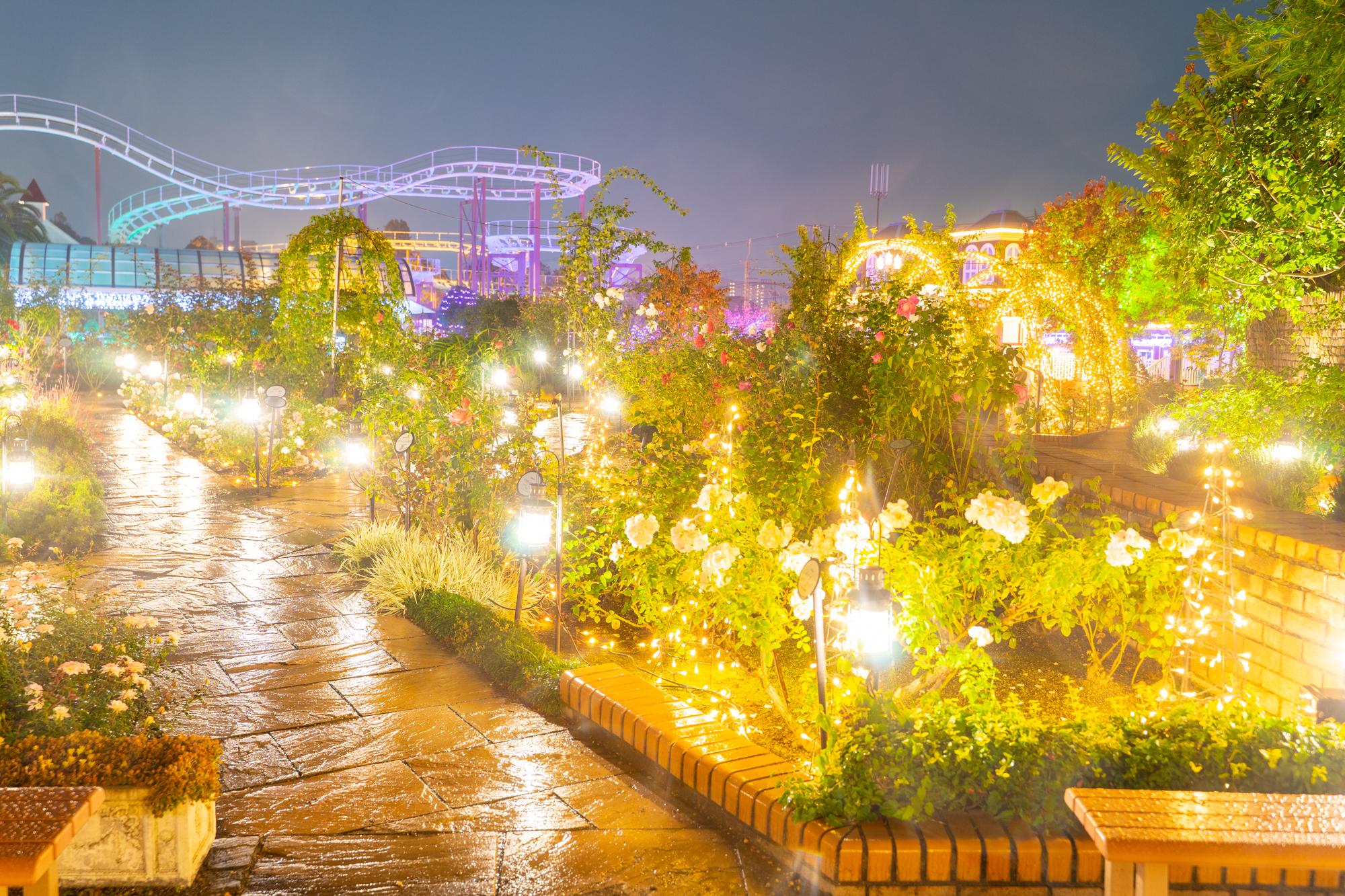光の遊園地-20110722