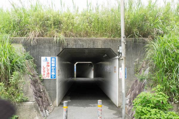 伊加賀-1606291