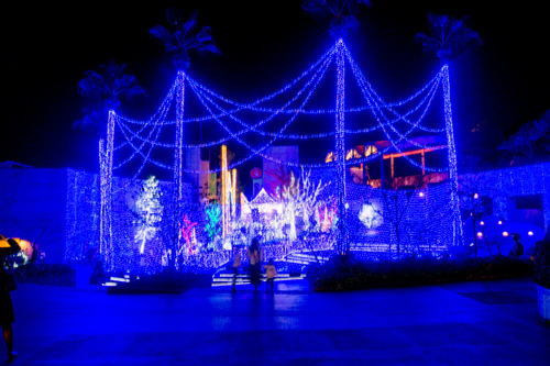 ひらかたパーク光の遊園地-151111158
