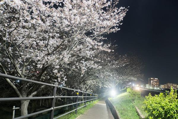 天野川-1904042