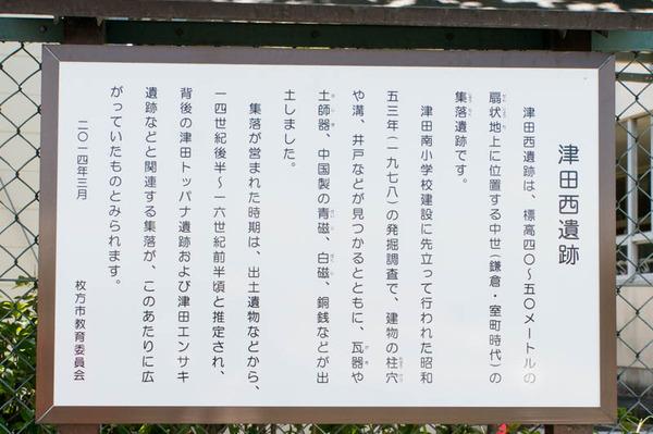 津田-1806071