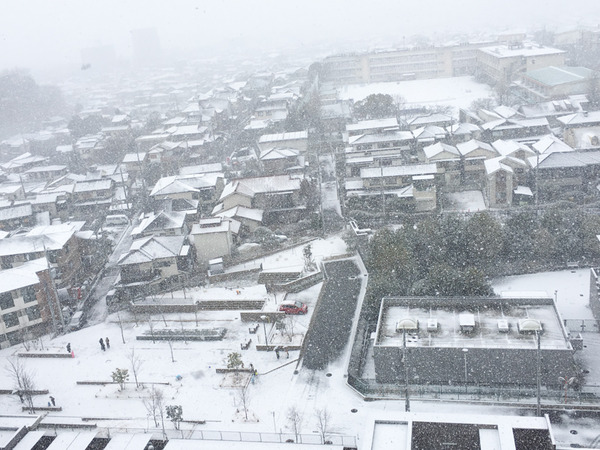 20170115雪-3